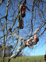 tree_climbing_day_ashton_court_bristol_artist_luke_slater546.jpg