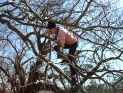 tree_climbing_day_ashton_court_bristol_kayle_brandon509.jpg