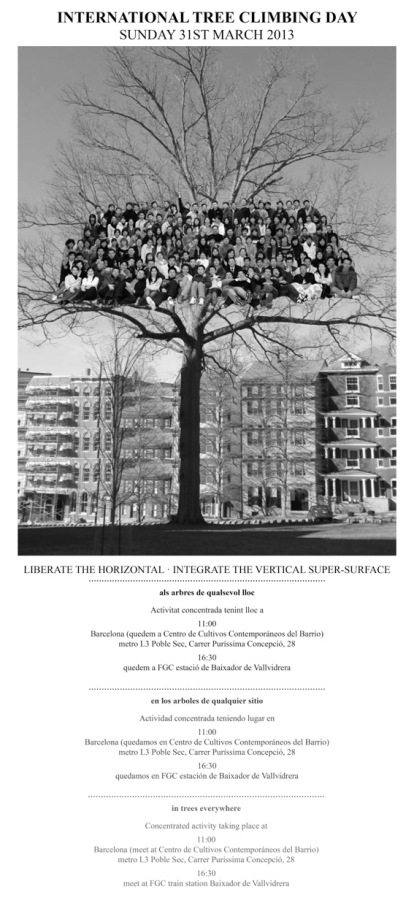 internationaltreeclimbing2013poster.jpeg