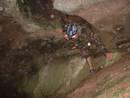 avon gorge mercavity cave heath bunting, bristol, united kingdom (uk).