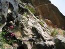 avon gorge pool cave flow stone, bristol, united kingdom (uk).